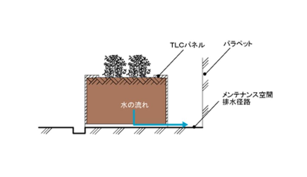 パラペット廻りの植栽帯 2